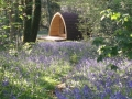 The Pod in a Lavender Field